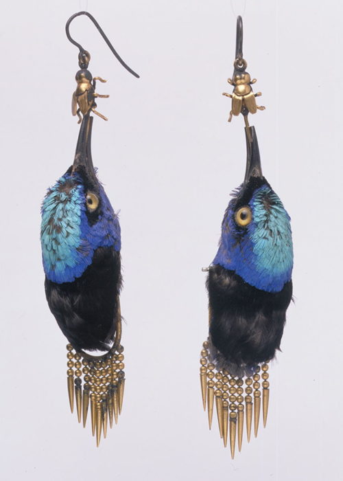 Photo- Earrings made from heads of Red Legged Honeycreeper birds, circa 1875 © Victoria and Albert Museum, London.