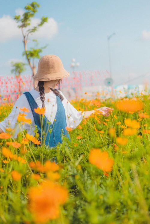photo-of-woman-on-flower-field-3156647